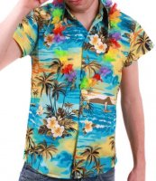 Hawaiishirt in L Aloha Hawaiihemd Shirt Hawaii...