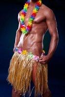 Hawaii Outfit komplettes Kostüm sexy Hula Dancer...